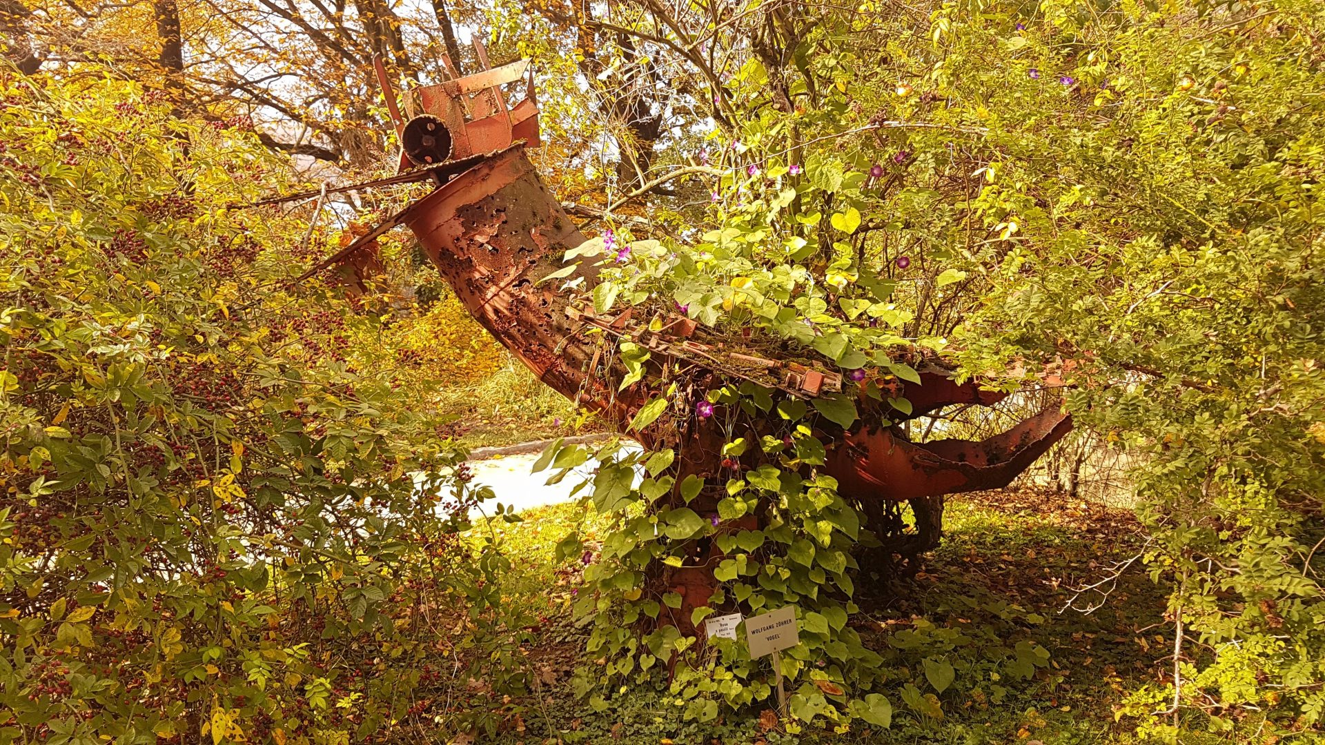 Инопланетный робот много лет назад захваченный в плен земной растительностью