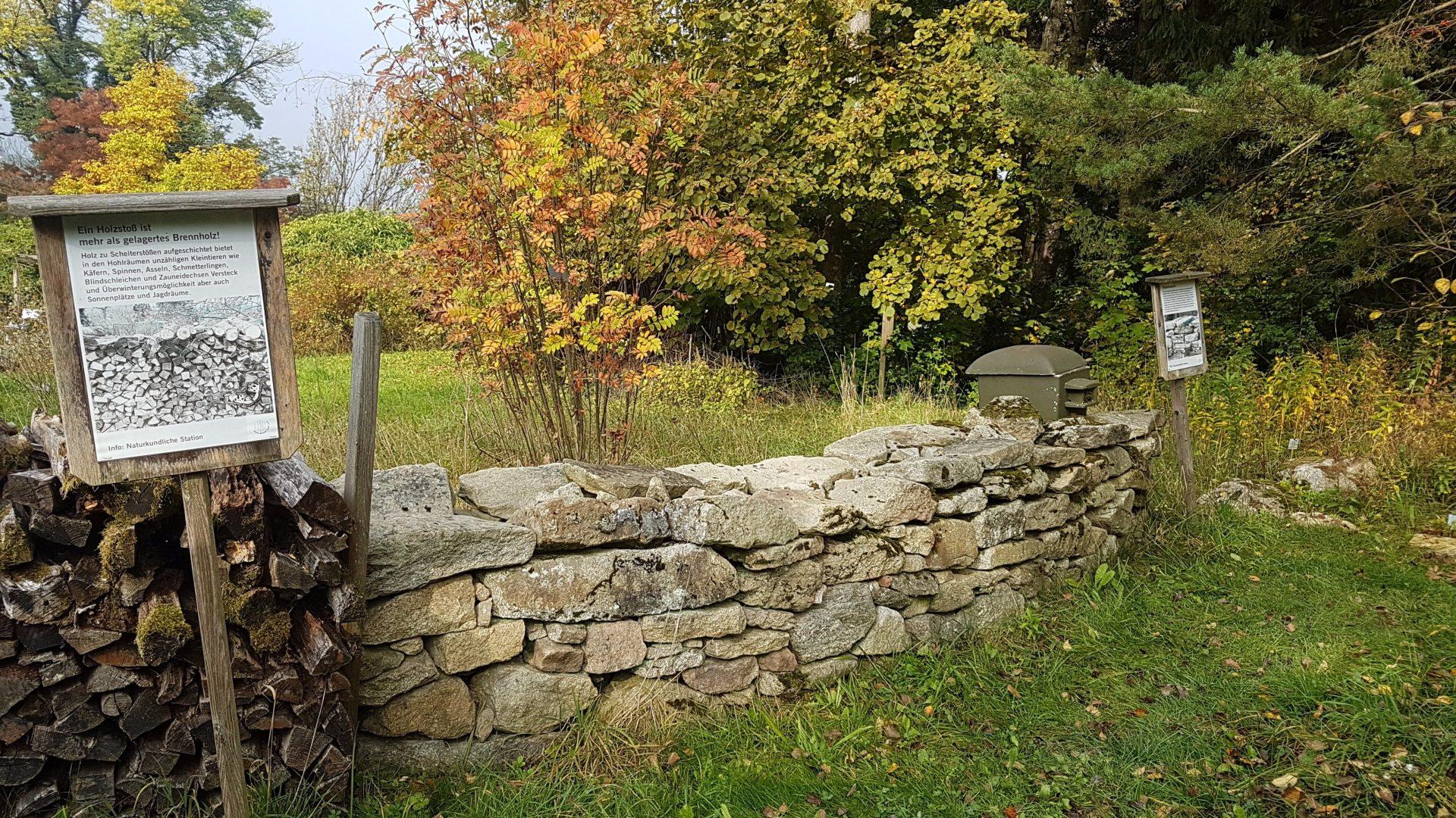 Дрова и камни, видимо, занесены в Красную книгу Австрии