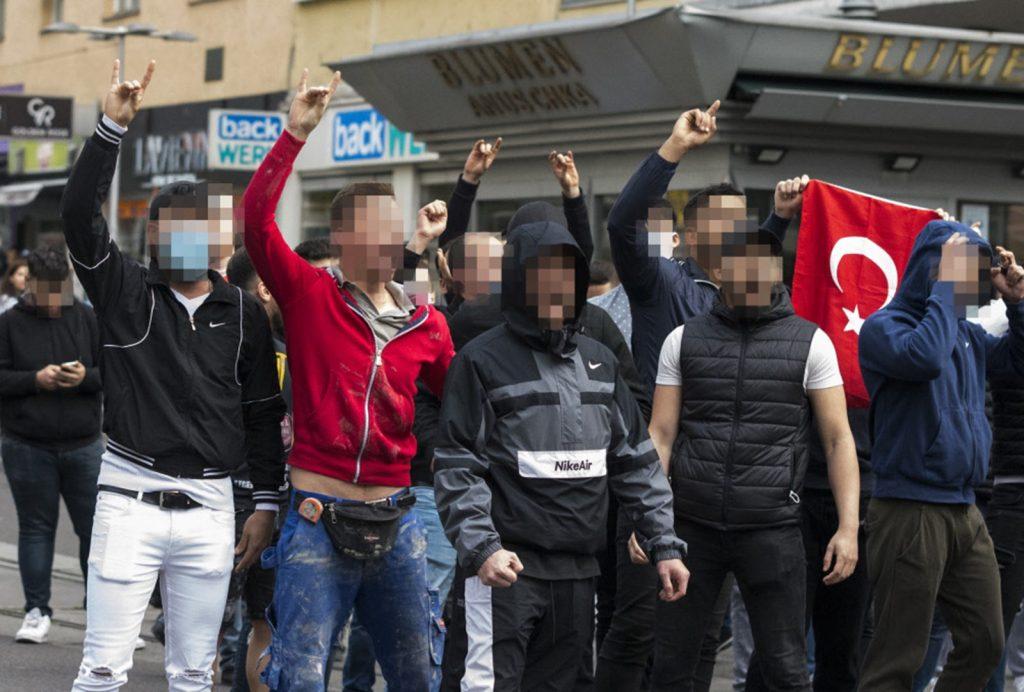 СМИ Австрии: турецкие националисты, чеченский сепаратист и Covid-19
